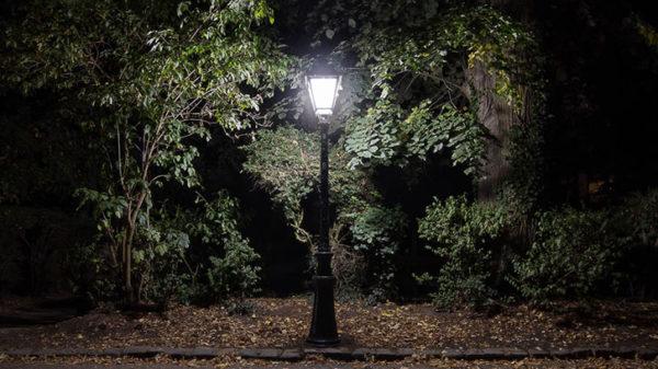 Se mettre au vert - photographie de nuit - vignette
