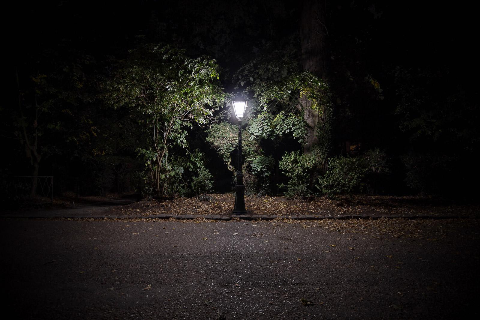 Se mettre au vert - photographie de nuit